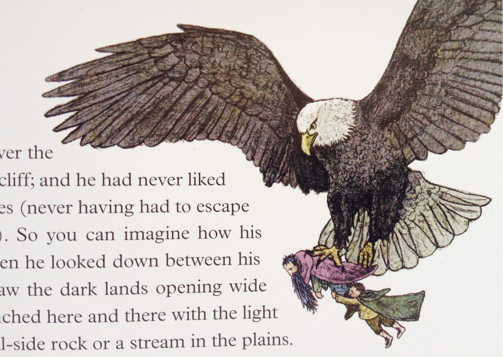 Detail from Jemima Catlin's new edition of