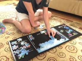 Madzzle, Puzzles Evolved: Kickstarter Review