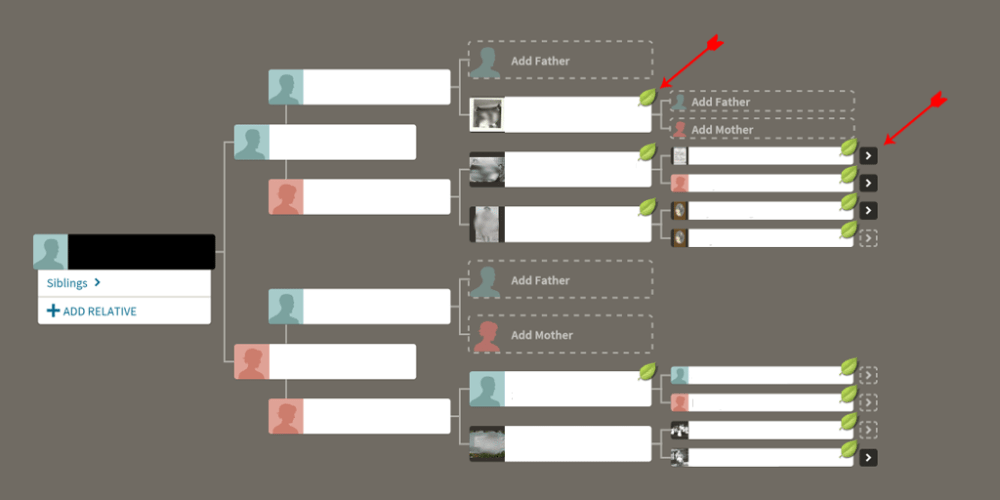 Whats the best way to find out my family tree/who my ancestors are?