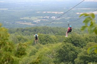 Collingwood's Scenic Caves and Thunderbird, Canada's Longest Twin Zip-Line