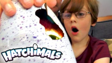 'Hatchimals' Destructible Egg Hatches Itself to Reveal Robot Fledglings