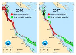 Great Barrier Reef bleaching