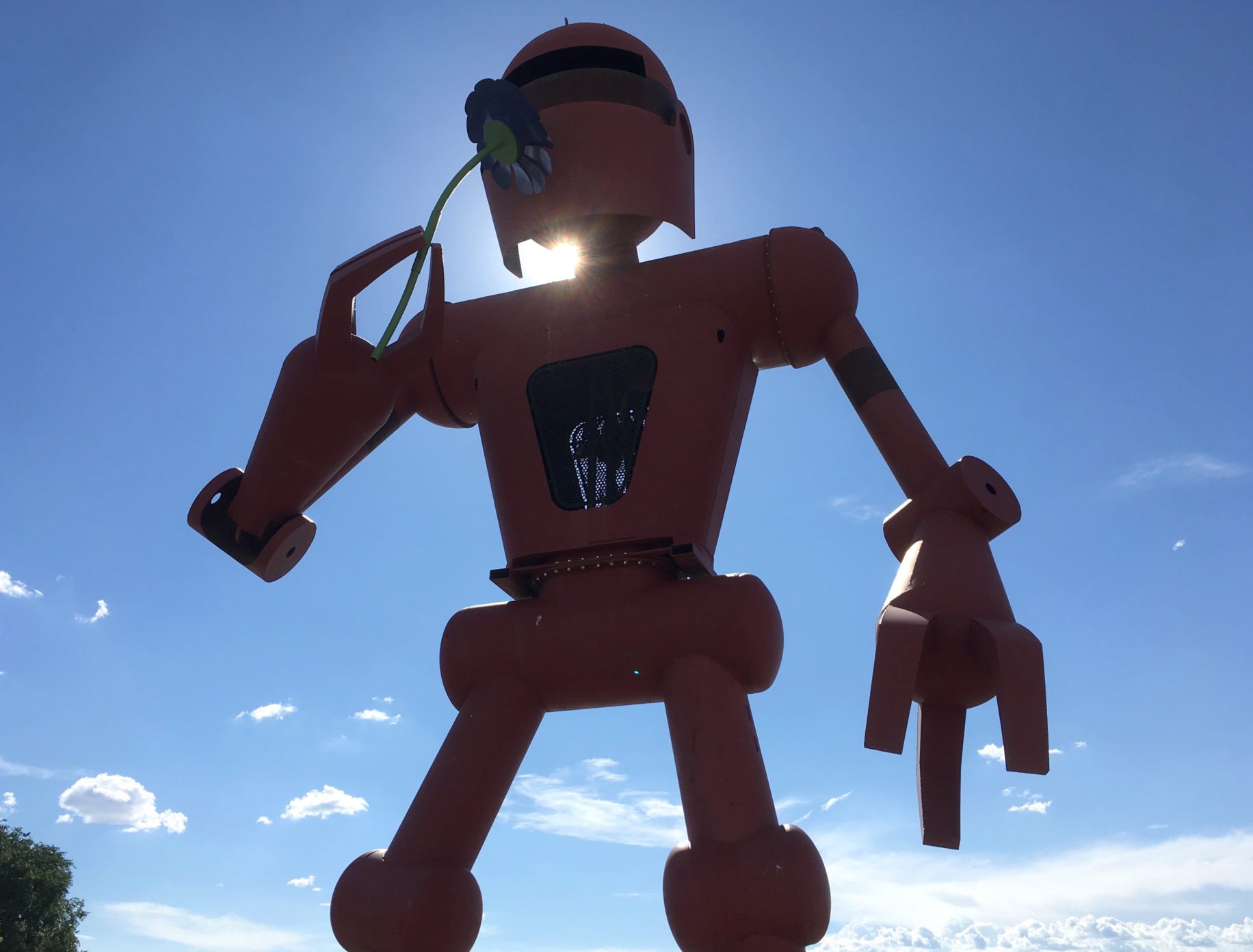 meow wolf robot